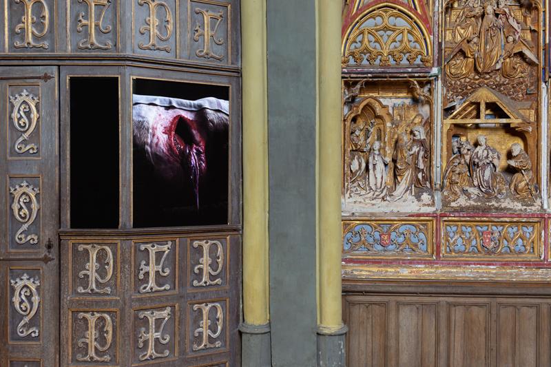 2020_De-Terre-et-de-Ciel_Biennale-d-Enghien_C-Regular-Studio_3